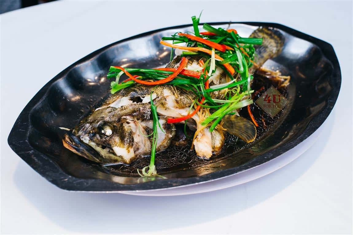 Cá Mú Hấp Xì Dầu / Grouper Steamed with soy sauce