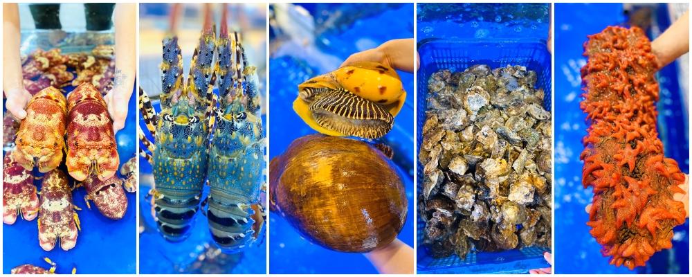 các loại hải sản tươi sống